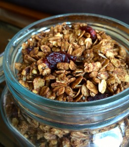 Chocolate Cranberry Granola
