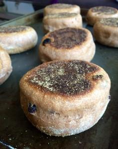 Whole Wheat Cinnamon Raisin English Muffins with cornmeal on top