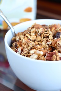 Date Sweetened Nutty Apple Granola 1