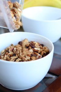 Date Sweetened Nutty Apple Granola 2