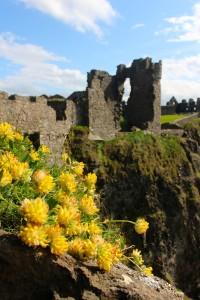 Castle Ireland 2