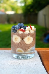 Vegan Chocolate Chia Seed Pudding