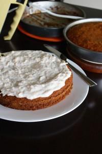 Vegan and Gluten-Free Coconut Birthday Cake
