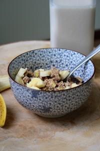 Cinnamon Apple Low-Fat Dehydrator Granola