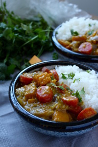 Pumpkin and Carrot Curry with white rice