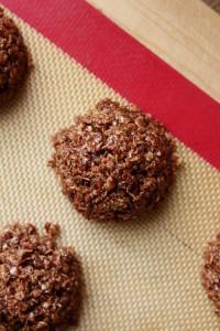 Recipe Redux No-Bake Cashew Butter Chocolate Oatmeal Cookies