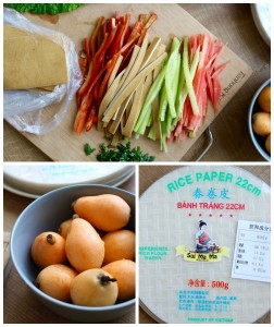 Homemade Spring Rolls with Low-Fat Peanut Sauce Collage