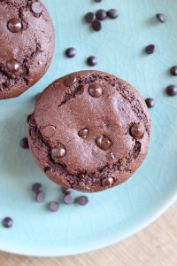 Low Fat Chocolate Peanut Butter Muffins for Two 1