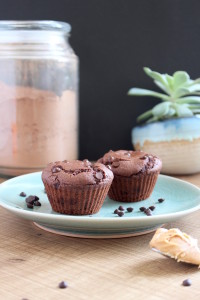 Low Fat Chocolate Peanut Butter Muffins for Two 3