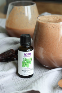 Dairy-Free Peppermint Chocolate Milk-5