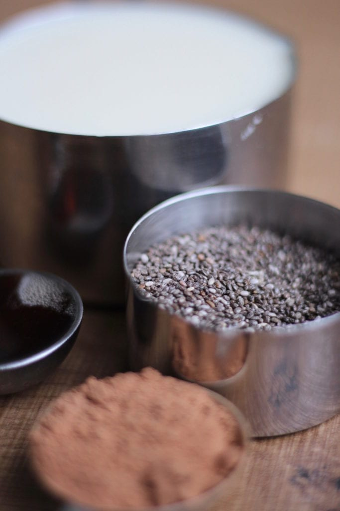 ingredients for chia seed pudding