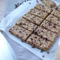 5 Ingredient Adaptable Granola Bars + Travel Plans