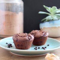 Low Fat Chocolate Peanut Butter Muffins for Two
