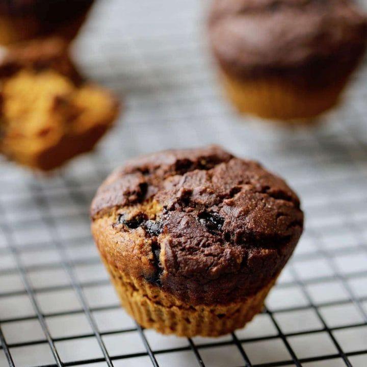 Pumpkin Chocolate Chip Layered Muffin Recipe