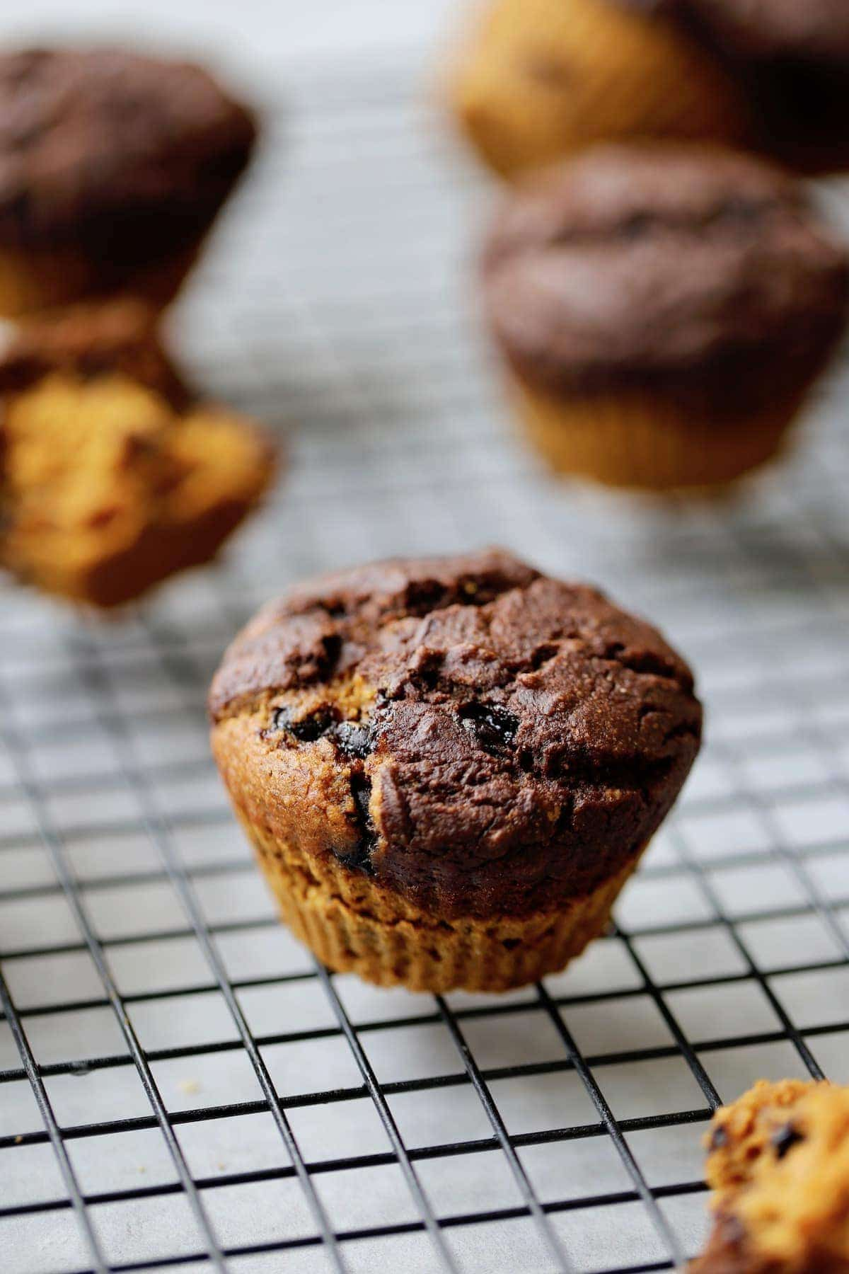 Pumpkin and Chocolate Layered Muffins cooling on a rack