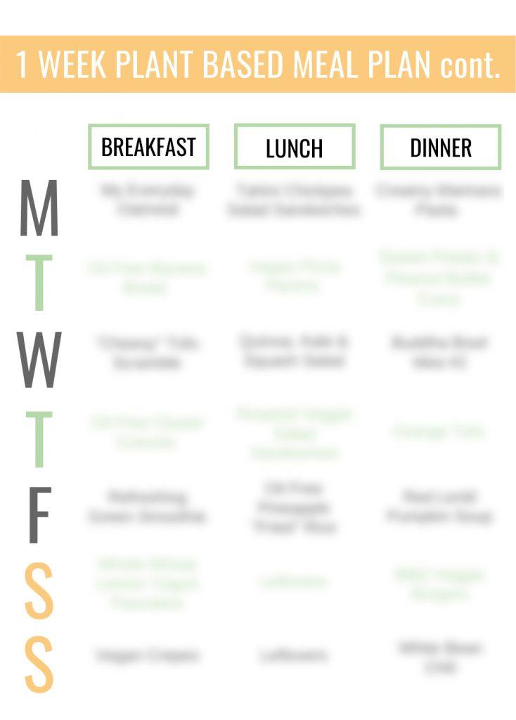 plant based meal plan blurred
