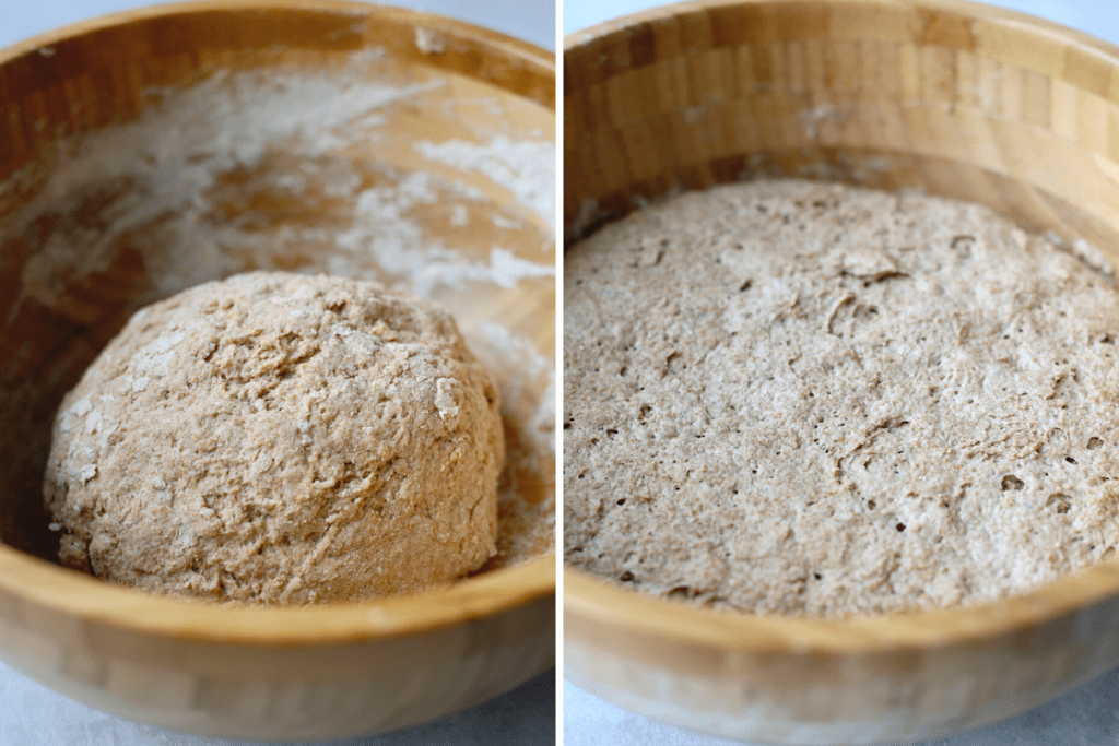 whole wheat artisan bread dough before and after it's risen