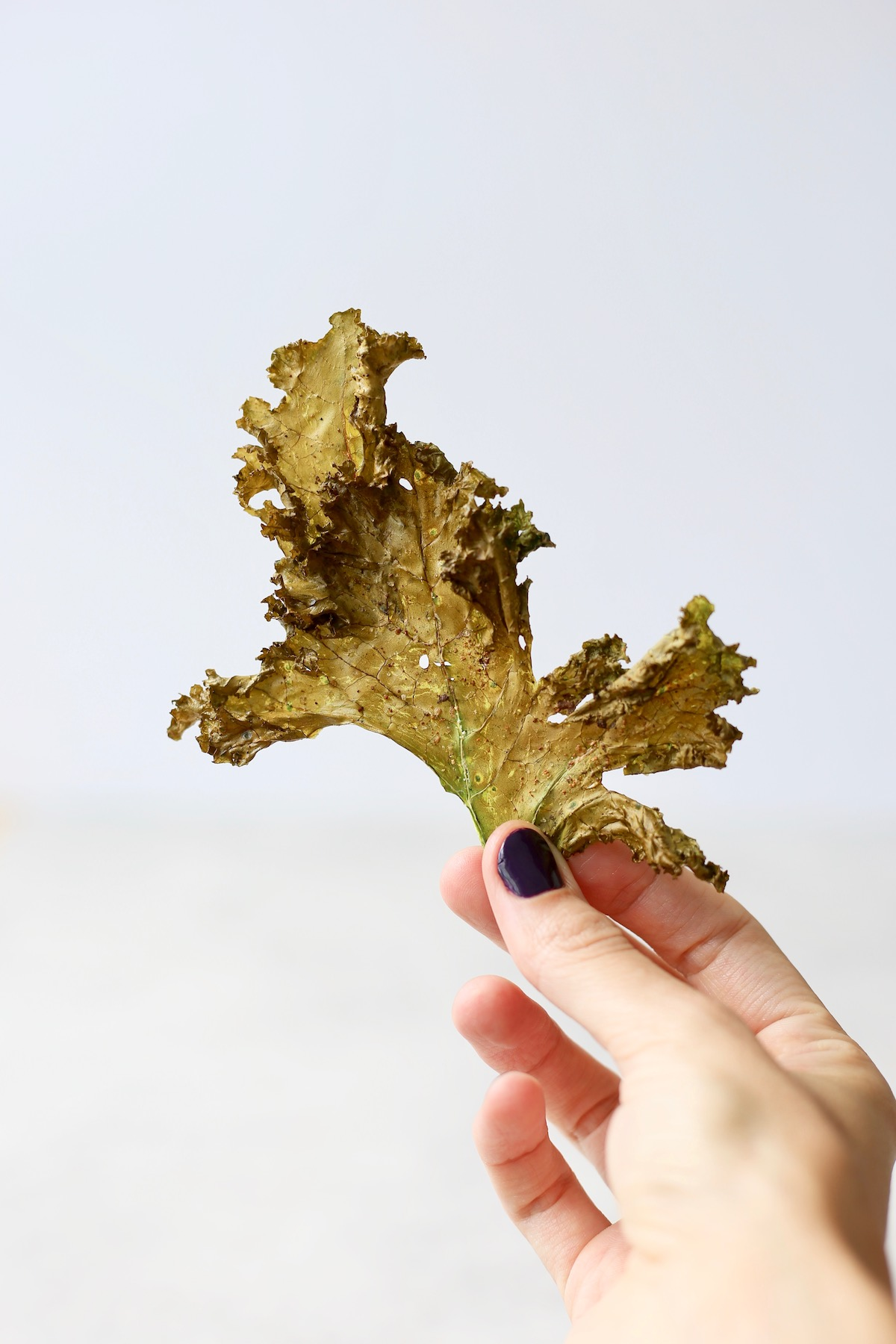 a hand holding up a large kale chip