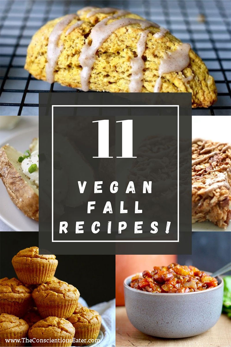 11 delicious Vegan Fall Recipes worth making for your family