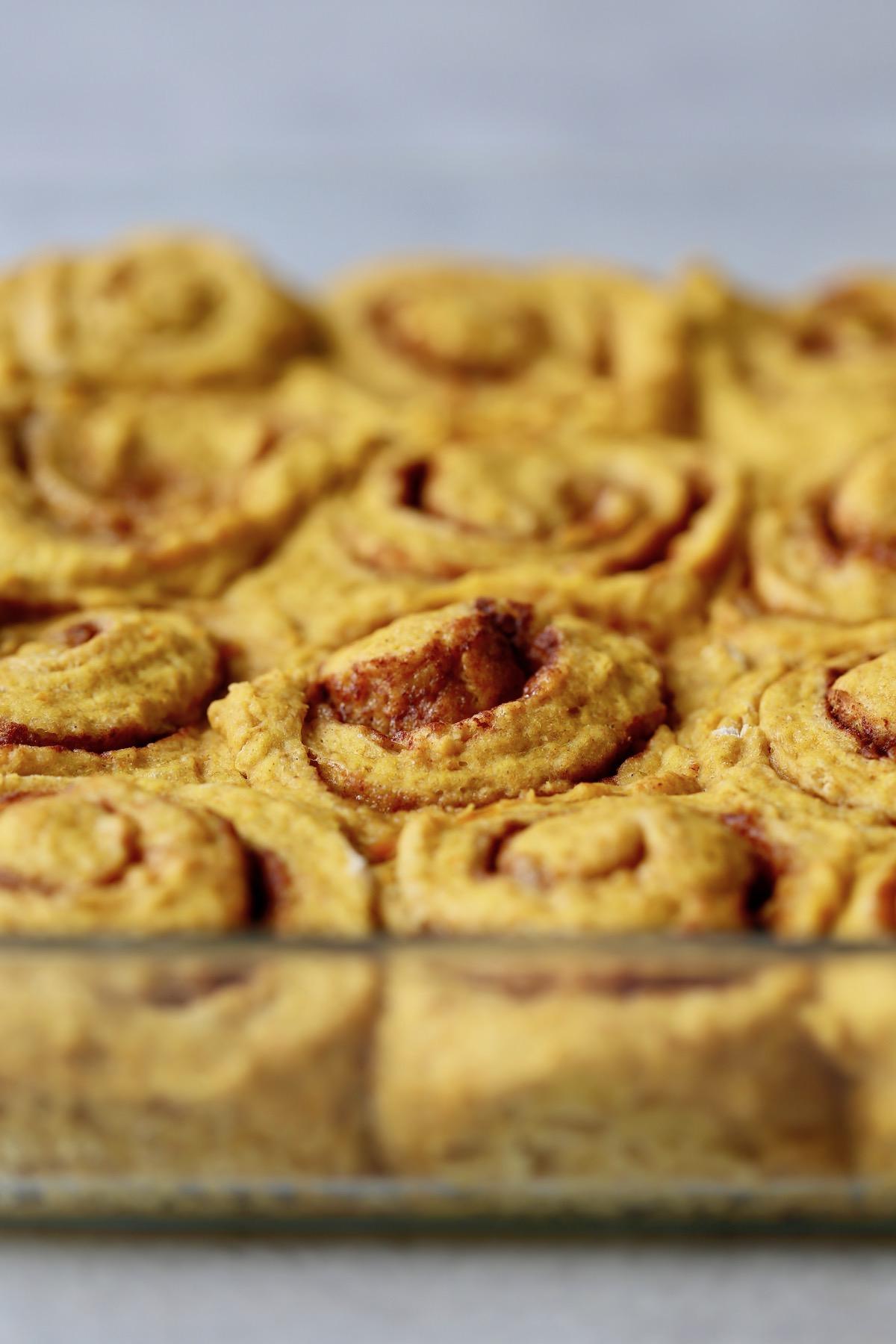 vegan pumpkin cinnamon rolls in a pan after baking